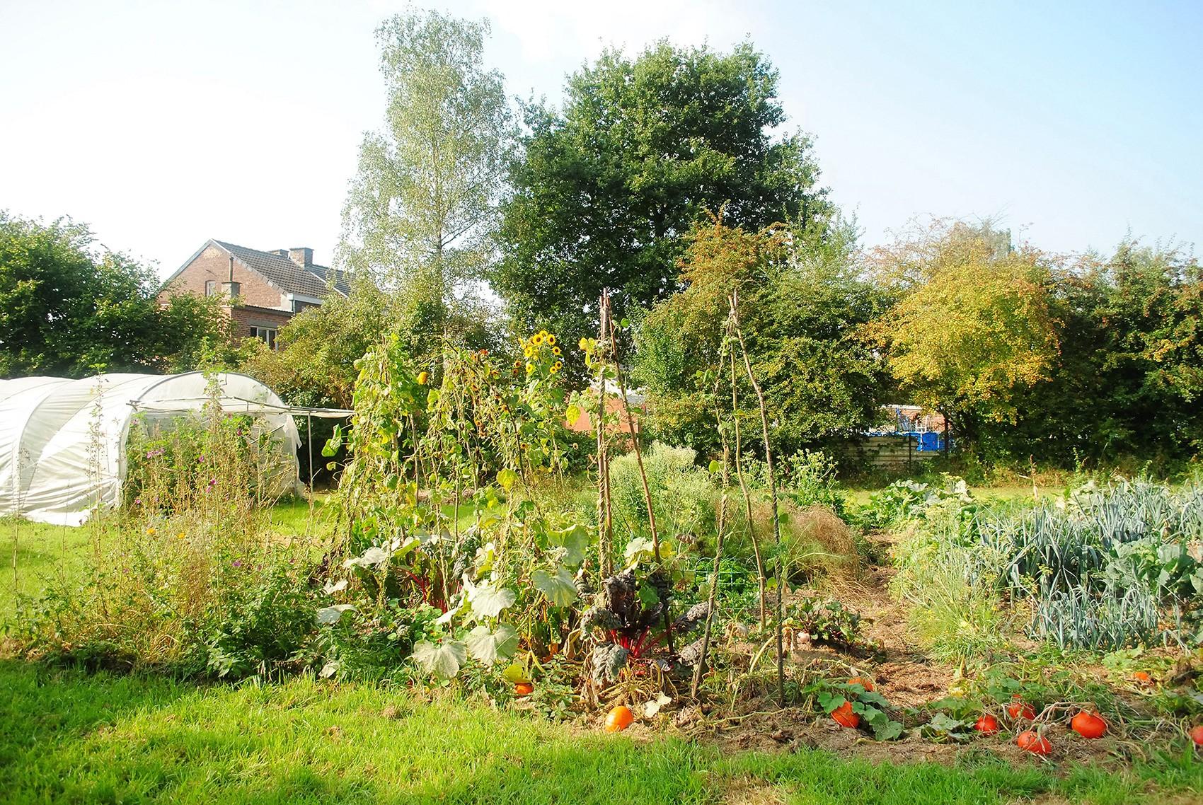 Au jardin 1 2 catherine kalpers for Jardin 1m2
